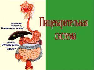 Комок в желудке причины и лечение