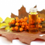Лечение желудка облепиховым маслом